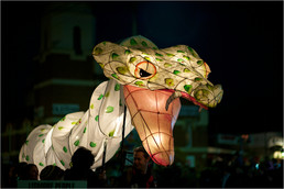 2010LanternParade_036-gallery409_Jun10210927.jpg image