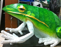 15.2Echo_the_Green_Frog-gallery517_May11141250.jpg image